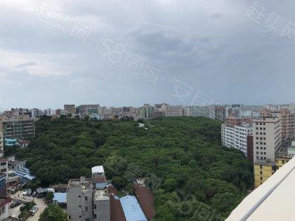 电梯阳台厨房大单房 · 泊寓-西乡茶树公社